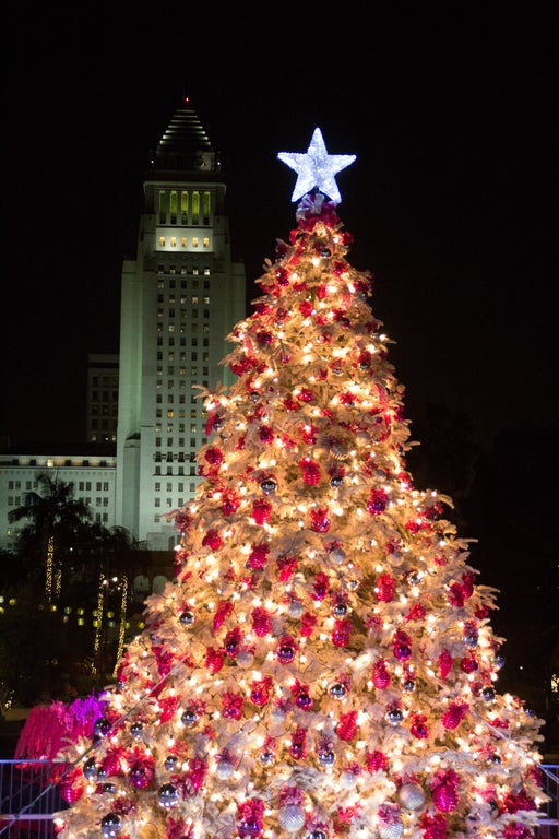 L.A. County Christmas Tree at Grand Park